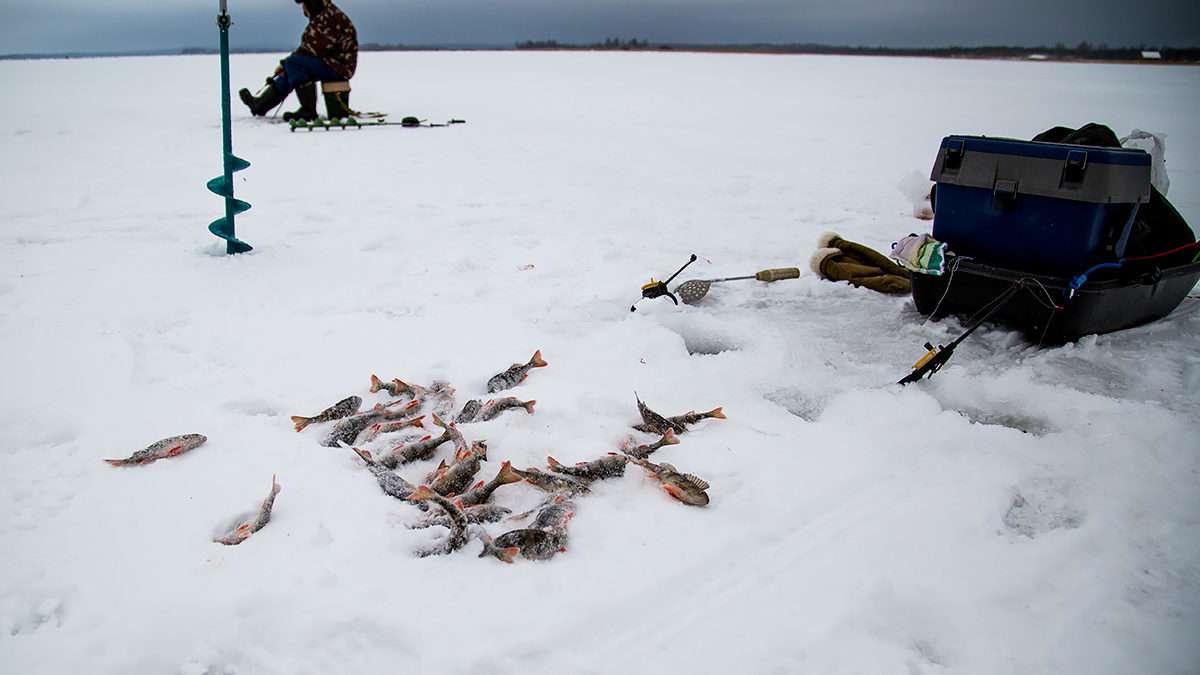 Рыбалка на Десне в Январе
