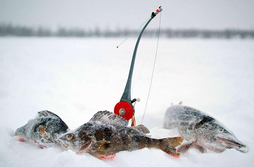 Снасти для подледной рыбалки
