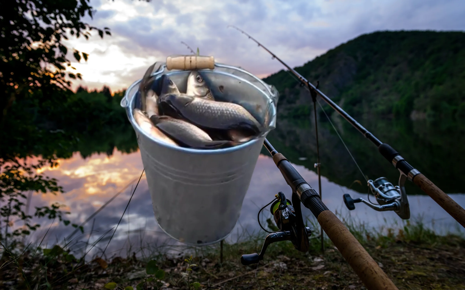 Сохранение улова в знойную погоду